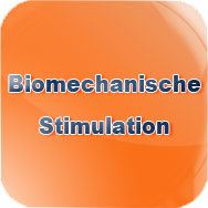 Biomechanische Stimulation